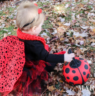 How to make a homemade baby ladybug halloween costume for your little girl, complete with a ladybug painted pumpkin, red antennae headband, matching handmade mommy and me infinity scarves, and little ladybug wings | FoodMarriage.com