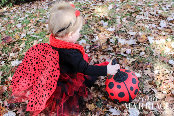 Baby ladybug halloween costume tutorial food marriage how to make a homemade baby ladybug halloween costume for your little girl complete with solutioingenieria Image collections